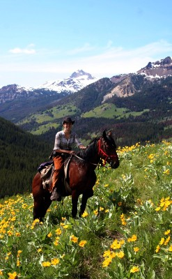 Wilderness Classroom-Horse riding in alpine meadow