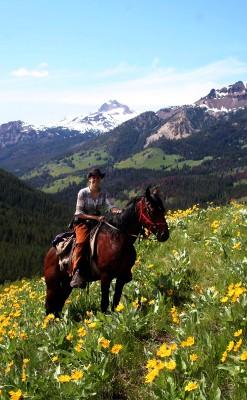 ESL Ranch-Riding in alpine meadow